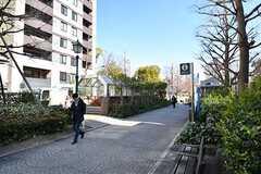 都営新宿線・浜町駅の様子。(2017-02-01,共用部,ENVIRONMENT,1F)
