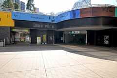 都営大江戸線・勝どき駅の様子。(2012-02-24,共用部,ENVIRONMENT,1F)