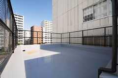 屋上の様子2。(2013-10-31,共用部,OTHER,5F)