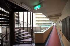 廊下の様子。(2010-08-10,共用部,OTHER,2F)