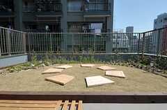 緑化された屋上の様子。ソーラーパネル式のライトも設置されています。(2012-02-10,共用部,OTHER,4F)