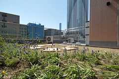 この位置からだと東京湾岸花火大会をバッチシ見られるそう。(2012-02-10,共用部,OTHER,4F)