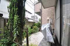 庭の様子。(2014-05-22,共用部,OTHER,1F)