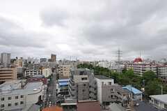 窓からの景色。(806号室)(2012-06-25,専有部,ROOM,8F)