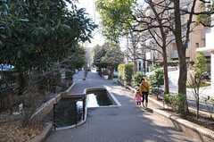 駅からシェアハウスまでの道のりにある緑道の様子。(2012-01-26,共用部,ENVIRONMENT,1F)