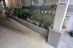 自転車置き場の様子。(2013-03-11,共用部,GARAGE,1F)