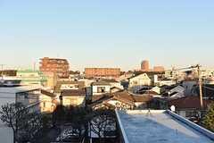 屋上から見た小岩周辺の景色。(2016-11-29,共用部,OTHER,4F)
