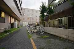自転車置き場の様子。(2015-10-02,共用部,GARAGE,1F)