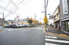 東京メトロ東西線・葛西駅からシェアハウスに向かう道の様子2。銀杏並木がキレイです。(2014-12-11,共用部,ENVIRONMENT,1F)