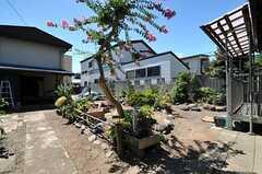 庭の様子。(2013-09-03,共用部,OTHER,1F)