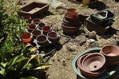 今後野菜などを育てていくのだそう。(2013-09-03,共用部,OTHER,1F)