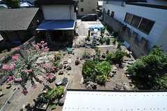 庭が一望できます。(204号室)(2013-09-03,専有部,ROOM,2F)