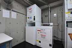 コイン式の洗濯機が2台、ガス式の乾燥機が3台あります。(2011-08-26,共用部,LAUNDRY,1F)