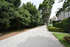 JR南武線・府中本町駅からの道のりは緑がいっぱい。気持ちの良い道です。(2016-07-28,共用部,ENVIRONMENT,1F)
