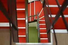 階段の様子。レッドカーペットです。(2014-11-04,共用部,OTHER,4F)