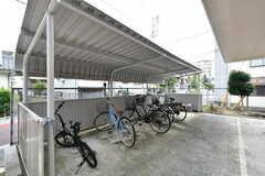 自転車置場の様子。バイクも停められます。(2019-09-11,共用部,GARAGE,1F)