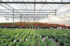 オーナーさんの農園の様子。近所で花緑の生産を行っています。(2016-02-09,共用部,ENVIRONMENT,1F)