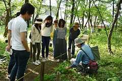 裏の雑木林を歩く解説付きのツアーにも参加できます。(2016-04-30,共用部,PARTY,1F)