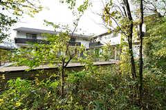 隣の雑木林から見たシェアハウスの様子。(2017-11-14,共用部,OTHER,1F)