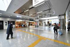 京王線・高幡不動駅構内の様子。(2017-03-09,共用部,ENVIRONMENT,1F)