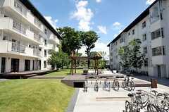 棟と棟の間には緑いっぱいの敷地が広がっています。ウッドデッキのテラスには、ラウンジから直接出られます。(2012-08-05,共用部,OTHER,1F)
