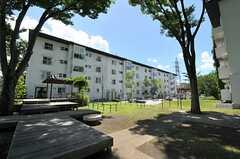 敷地内には、大きな植栽がたくさん。夏真っ盛りの時期でも、日陰は涼しいです。(2012-08-08,共用部,OTHER,1F)