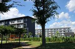 敷地の奥には、世帯向け住居棟、シニア向け住居棟があります。(2012-08-05,共用部,OTHER,1F)