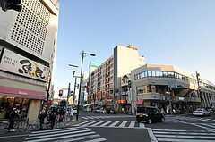 JR中央線・豊田駅からシェアハウスへ向かう道の様子。(2012-08-05,共用部,ENVIRONMENT,1F)