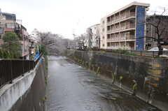 近くには川が流れています。(2012-12-21,共用部,ENVIRONMENT,1F)