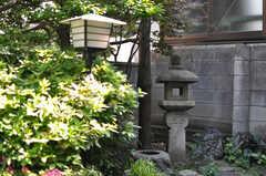 庭の様子2。(2013-05-26,共用部,OTHER,1F)