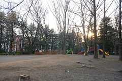 シェアハウスのとなりにある公園。(2016-03-03,共用部,ENVIRONMENT,1F)