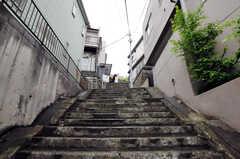 シェアハウス前の階段の様子。結構、段数あります。(2012-05-25,共用部,OTHER,1F)