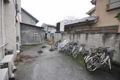 自転車置き場の様子。(2009-02-25,共用部,GARAGE,1F)