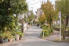 周辺は緑も多い住宅街です。(2018-10-09,共用部,ENVIRONMENT,1F)
