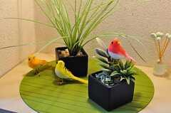 小鳥が出迎えてくれます。(302号室)(2012-06-26,周辺環境,ENTRANCE,3F)