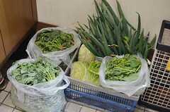 オーナーさんは畑で野菜を育てています。ココに置いてある野菜は入居者さんが自由に食べて良いのだそう。(2014-03-24,周辺環境,ENTRANCE,1F)