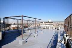 屋上の様子。物干し可能。(2009-01-16,共用部,OTHER,6F)