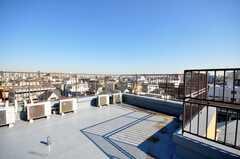 屋上の様子2。(2009-01-16,共用部,OTHER,6F)