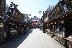 駅の近くには「寅さん」シリーズで有名な高木屋老舗があります。(2013-03-11,共用部,ENVIRONMENT,1F)