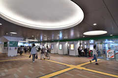 各線・新小岩駅の様子。(2019-09-20,共用部,ENVIRONMENT,1F)