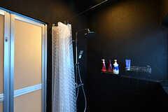 シャワールームの様子2。脱衣スペースとはカーテンで仕切られています。(2017-06-12,共用部,BATH,1F)