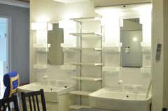 洗面台の様子、(2012-10-26,共用部,OTHER,2F)