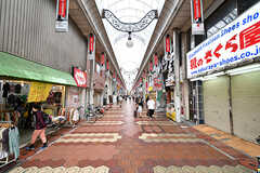新小岩駅前のアーケード商店街。(2017-05-18,共用部,ENVIRONMENT,1F)