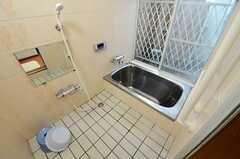 バスルームの様子。(2013-06-06,共用部,BATH,1F)