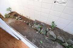 庭の様子。(101号室)(2012-10-01,専有部,ROOM,1F)