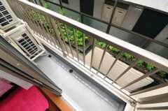 ベランダの様子。(202号室)(2010-06-09,専有部,ROOM,2F)