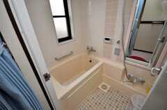 バスルームの様子。(2009-02-10,共用部,LAUNDRY,3F)