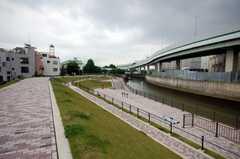 物件近くの石神井川の様子。(2008-06-04,共用部,ENVIRONMENT,1F)