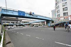 各線・王子駅の様子2。(2016-09-21,共用部,ENVIRONMENT,1F)
