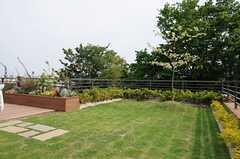 屋上の様子4。(2013-05-10,共用部,OTHER,3F)